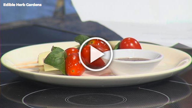 Edible Herb Gardens with Lisa Andrews, RD on Fox19