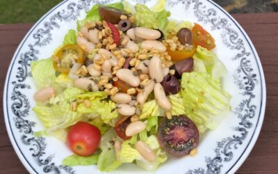 White bean salad with kalamata olives and Crunchsters mung beans