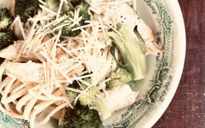Chicken and broccoli over egg noodles with Parmesan
